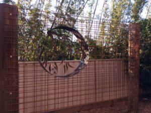 Vertical Garden by Ironbark Metal Design