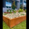 Corten Steel Garden Edging with Top Fold