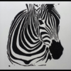 Lone Zebra Wall Art in Powder Coated Aluminium